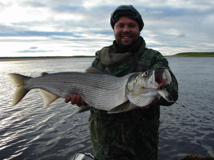 рыбалка в Якутии — виды рыб
