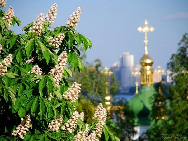туры в Киев