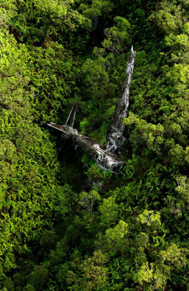 упавший в джунглях самолет