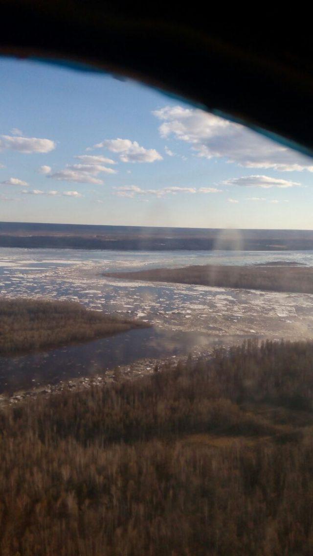 Река Алдан сейчас